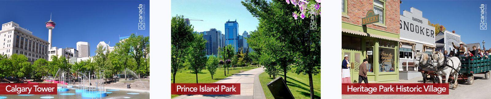 Conheca mais sobre o que Calgary tem a oferecer